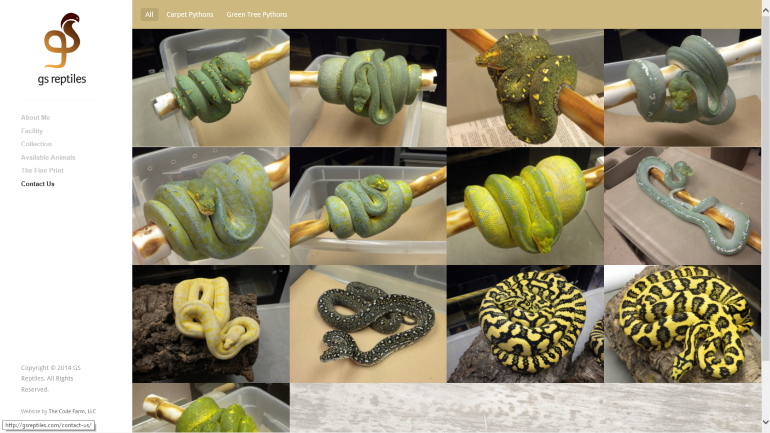 GS Reptiles HomePage